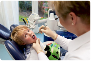 How to Choose The Right Dental Office In Flossmoor Or Homewood I L